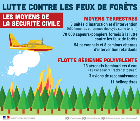 Infographie feux dispositif