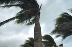 Ouragans Irma et José aux Antilles : point de situation - 9 sept. 11h